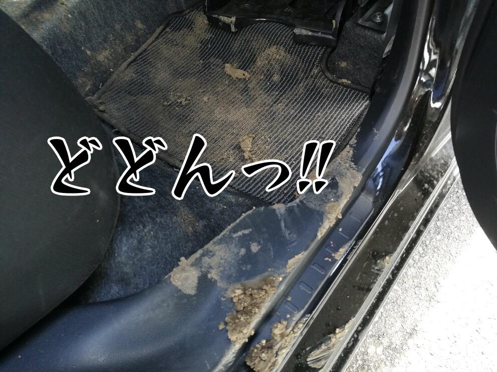 泥だらけの後部座席1